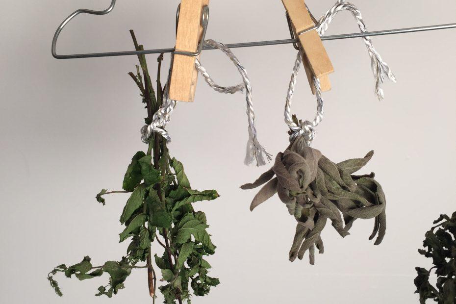 mit Wäscheklammer an Kleiderbügel hängen
